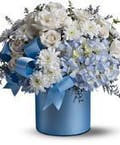 Baby Blue Bouquet
