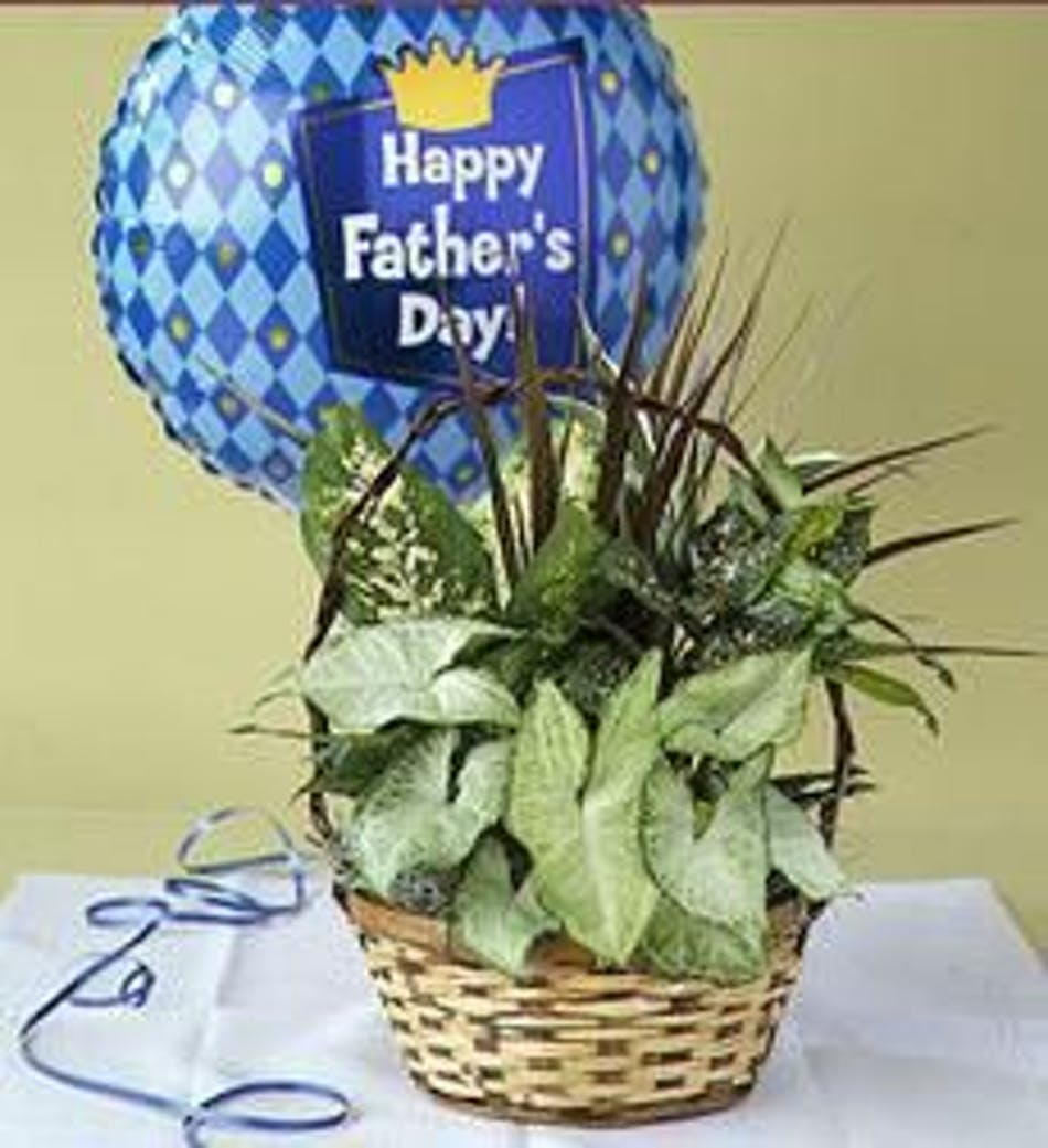 Quota Planter With Balloon For Dad Delivered Todayquot