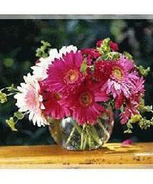 Delightful Vase of Fresh Cut Gerbera Daisies