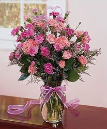 Pretty Pink Carnations in Clear Vase