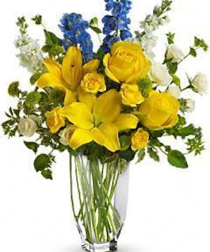 Yellow & French Blue