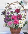 """""""Butterfly Basket"""""""