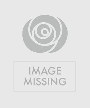 Shining On Bouquet