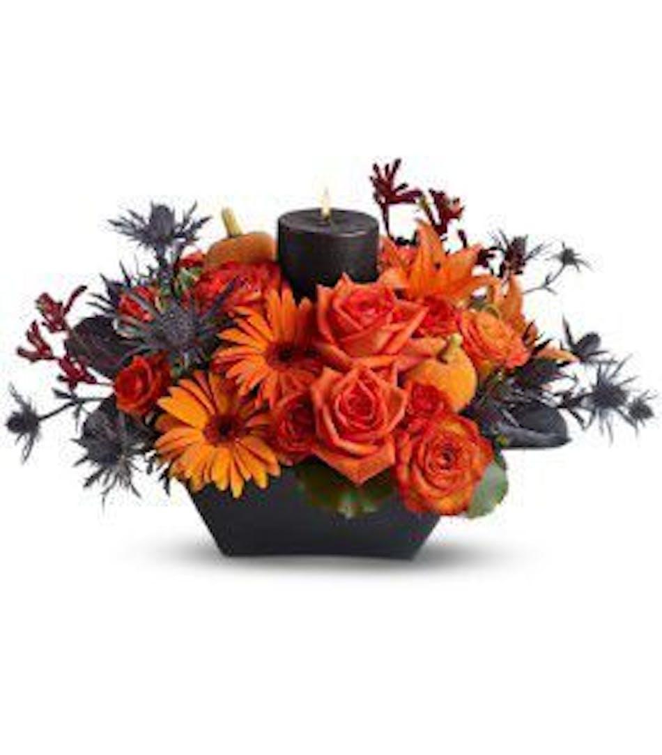 Spooky Spell - Durocher Florist - Halloween Specials