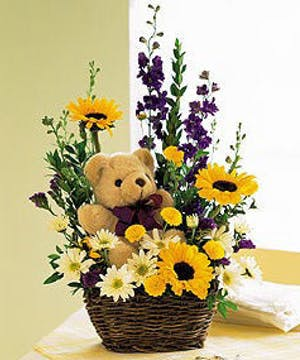 Assorted Fresh Cut Flowers & Teddy Bear Gift Inc.
