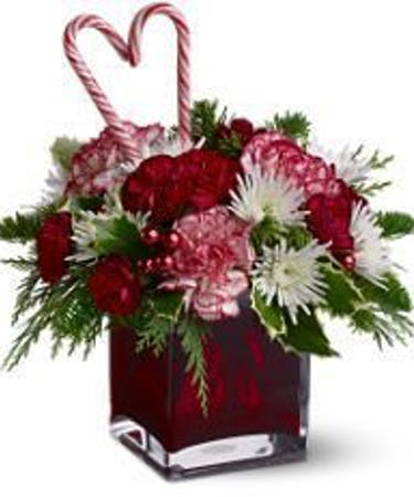 Christmas Flowers.Holiday Sweetheart