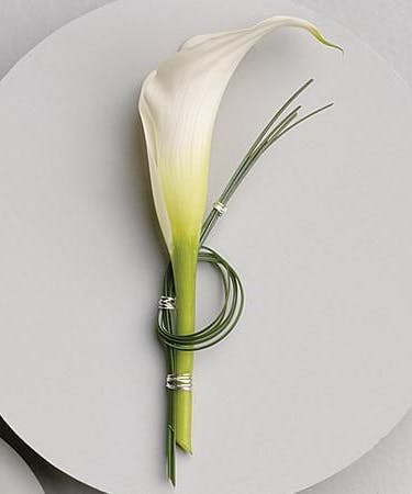 Single Calla Lily Boutonniere Durocher Florist Boutonnieres